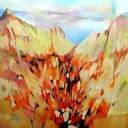 landschap_bergen01